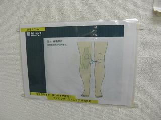 kawamura6.JPG